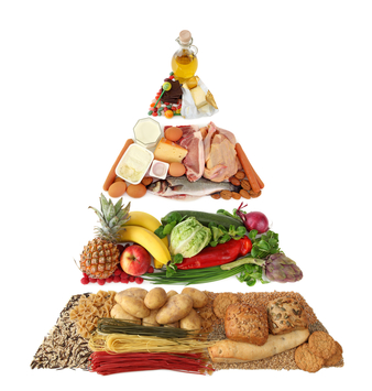 Should You Follow the Food Pyramid Guidelines?
