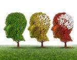 improve-brain-health