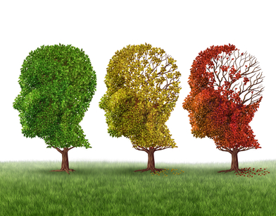 The 3 Essentials of Brain Health