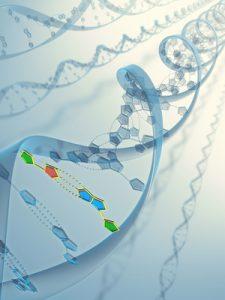 epigenetics-dr-nathalie-beauchamp