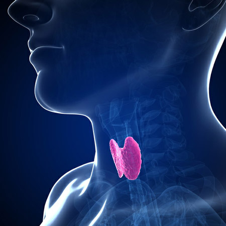 Hack Your Thyroid Health
