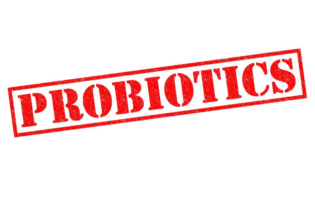 Probiotics—Keep Your Bugs Happy!